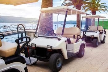 """Golf Cart Coverage """"Fore"""" You!"""