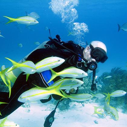 Diving & Snorkeling