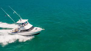 Bertram Yachts Bertram 35 2018
