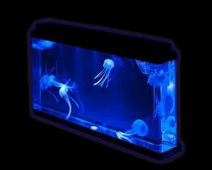 Aquaficial Jellyfish Tank (Large Tank)