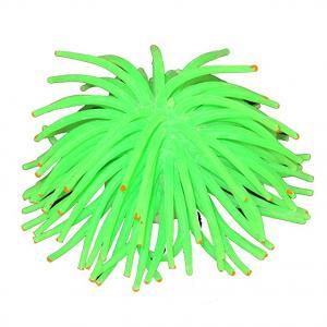 "3"" Anemone, Green"