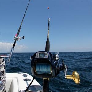 Daiwa Tanacom Bull 1000 Kite Rod Combo
