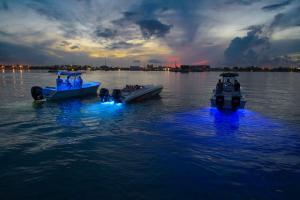 Lumishore Under Water Lights