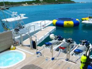 Integrated Swim Platform Passerelles & Gangways