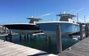 Neptune's Low-Profile Beamless Boat Lifts