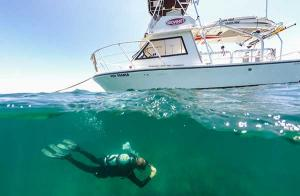 YachtDiver Crew Training | Dive Officer | Brownie's YachtDiver