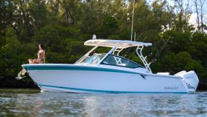 272DC Fishing Boat Model | Dual Console