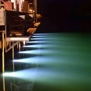 LED Sea-Vue Dock Lights